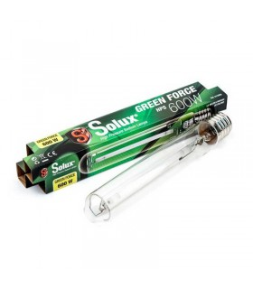 Fast Buds Tangie Matic Auto (3Uds)