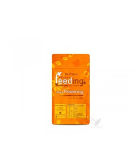 Positronics Caramelice (1 Uds)