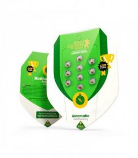 Filtro Osmosis Maxquarium 000 PPM 500 L/D...