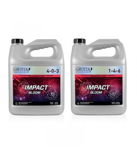 Filtro Des-Ionización 10 Growmax Water | Hortitec